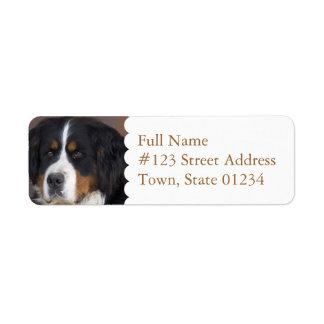 Etiqueta del remite del perro de montaña de etiqueta de remite
