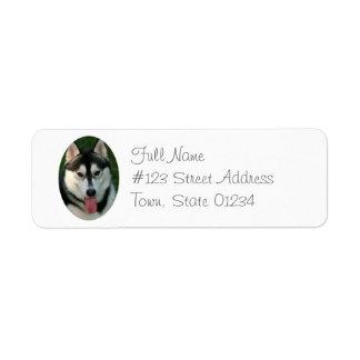 Etiqueta del remite del perro de trineo del husky etiqueta de remitente