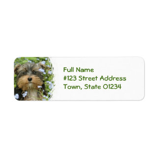 Etiqueta del remite del perro de York Terrier Etiquetas De Remite