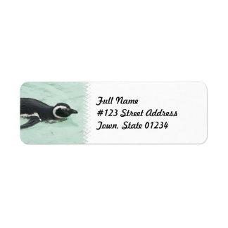 Etiqueta del remite del pingüino de la natación etiqueta de remite