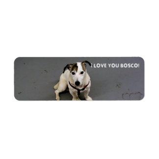 etiqueta del terrier de Russell del enchufe Etiquetas De Remite