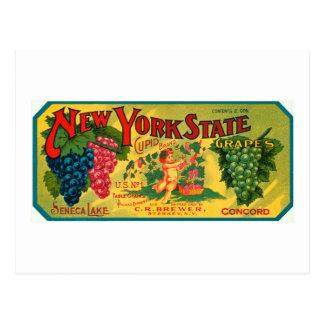 Etiqueta del vintage del anuncio de las uvas del postal