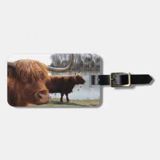 Etiqueta escocesa del equipaje del ~ del ganado de etiqueta de equipaje