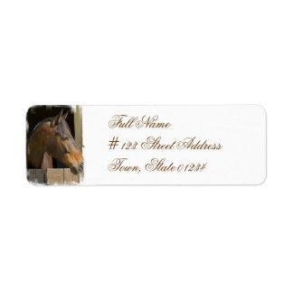 Etiqueta excelente del remite del caballo etiqueta de remitente
