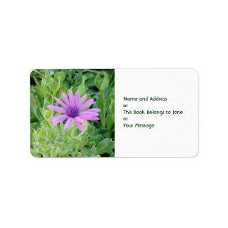 Etiqueta floral del nombre y dirección del Gerbera Etiquetas De Dirección