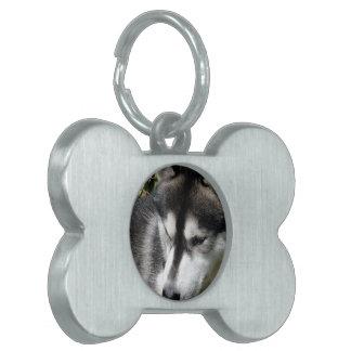 Etiqueta fornida del mascota del perfil placas de mascota