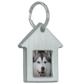 Etiqueta fornida del mascota del perro placas mascota