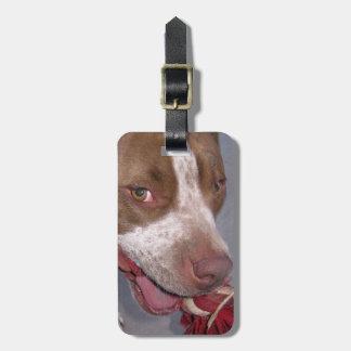 Etiqueta fresca del equipaje de Pitbull Etiquetas Bolsa