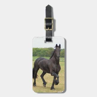 Etiqueta frisia del equipaje del caballo etiqueta de equipaje