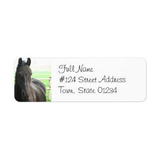 Etiqueta frisia negra del remite del caballo etiqueta de remite