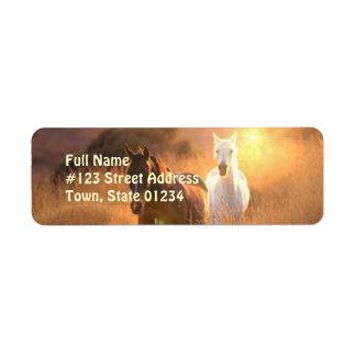 Etiqueta galopante del remite del caballo salvaje etiquetas de remite