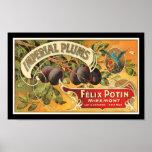 Etiqueta imperial del cajón de la fruta de los cir posters