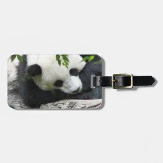 Etiqueta linda del equipaje de la panda etiqueta para maleta