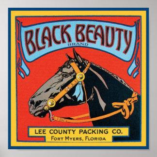 Etiqueta negra del cajón del vintage de la belleza posters