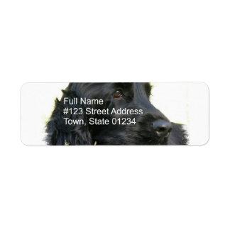 Etiqueta negra del remite de cocker spaniel etiquetas de remite