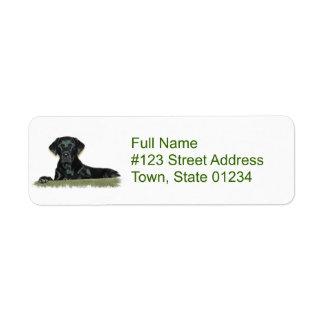 Etiqueta negra del remite del perro del etiquetas de remite