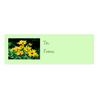 Etiqueta observada negro del regalo de Susans Tarjetas De Visita Mini