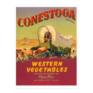 Etiqueta occidental del cajón del vintage de las v tarjetas postales
