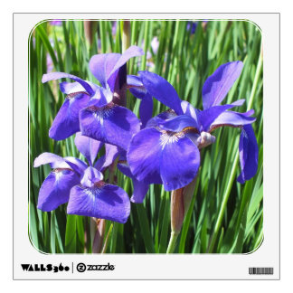 Etiqueta púrpura de la pared de los iris