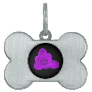 Etiqueta púrpura del mascota de la flor del azafrá placas mascota