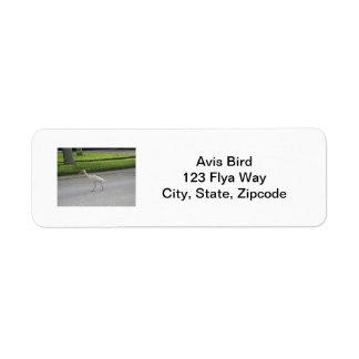 Etiqueta que camina de Ibis Etiquetas De Remite