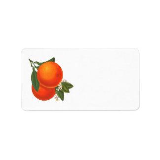 Etiqueta retra de los naranjas etiqueta de dirección