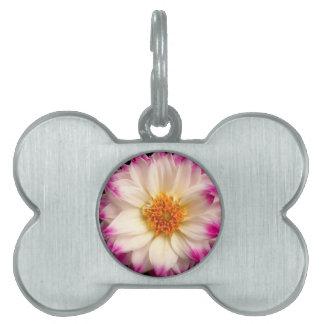 Etiqueta rosada blanca del mascota de la flor placas de mascota