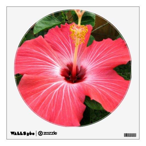 Etiqueta rosada de la pared del hibisco