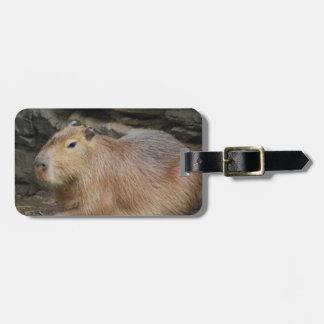 Etiqueta salvaje del equipaje del Capybara Etiquetas Bolsas