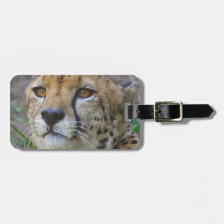 Etiqueta salvaje del equipaje del guepardo etiquetas bolsas