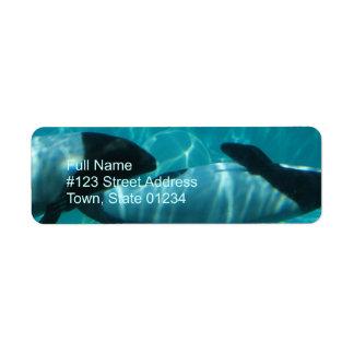 Etiqueta subacuática del remite de la ballena etiqueta de remite