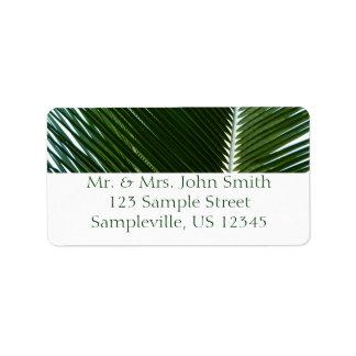 Etiqueta traslapada del remite de las frondas de l etiqueta de dirección