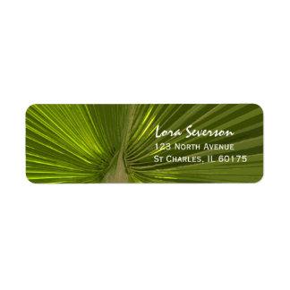Etiqueta tropical del remite de la palma etiqueta de remite