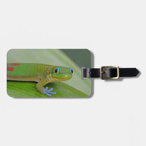 etiqueta verde del equipaje del taro del gecko etiquetas para maletas