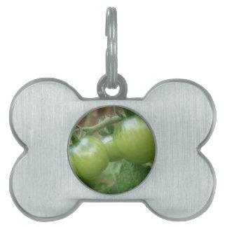 Etiqueta verde del mascota de los tomates placas de nombre de mascota