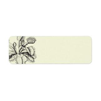 Etiquetas carnívoras de la planta del atrapamoscas etiqueta de remite