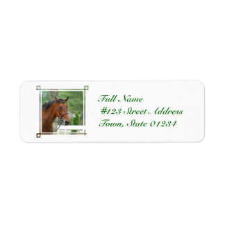 Etiquetas de correo árabes del caballo de la bahía etiqueta de remite