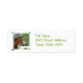 Etiquetas de correo árabes del remite del caballo etiqueta de remite