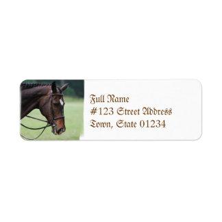 Etiquetas de correo árabes dulces del caballo etiqueta de remite