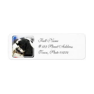 Etiquetas de correo blancos y negros de cocker spa etiqueta de remite