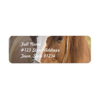 Etiquetas de correo cuartas del caballo de la cast etiquetas de remite