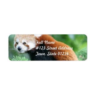 Etiquetas de correo curiosas de la panda roja etiqueta de remite