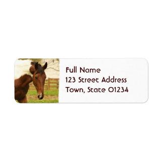 Etiquetas de correo de itinerancia del caballo de  etiqueta de remitente