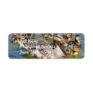 Etiquetas de correo de la familia del pato etiquetas de remite
