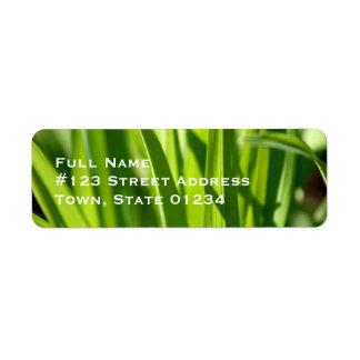 Etiquetas de correo de la hierba etiqueta de remite