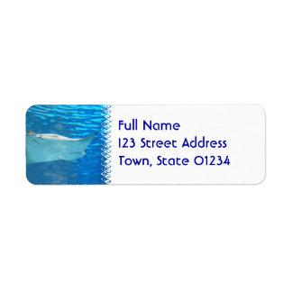 Etiquetas de correo de la natación de la pastinaca etiqueta de remite