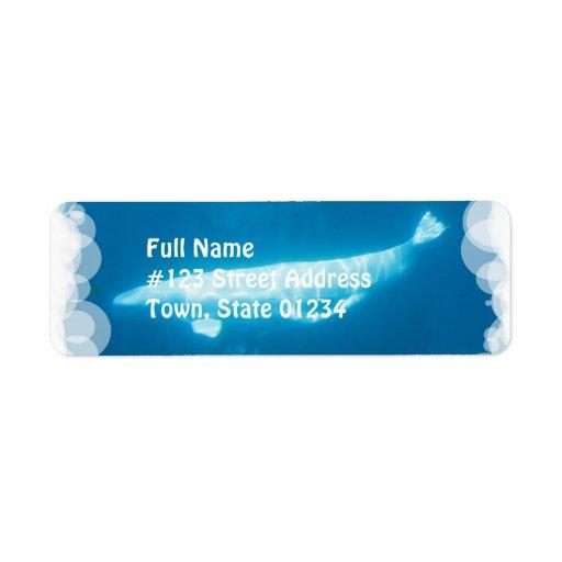 Etiquetas de correo de las ballenas de la beluga d etiquetas de remite