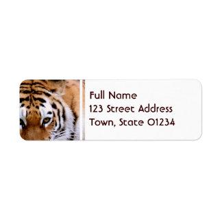 Etiquetas de correo de las marcas del tigre etiqueta de remite