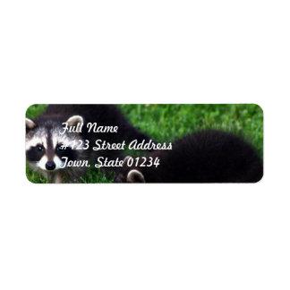 Etiquetas de correo de los mapaches del bebé etiquetas de remite