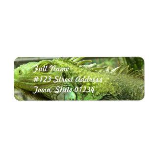 Etiquetas de correo de reclinación del lagarto etiquetas de remite